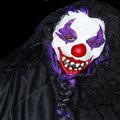 Alex Clowning Around